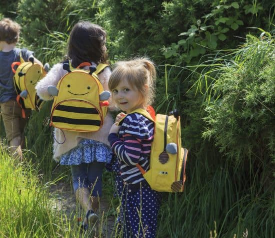 Bee and Bug Bags