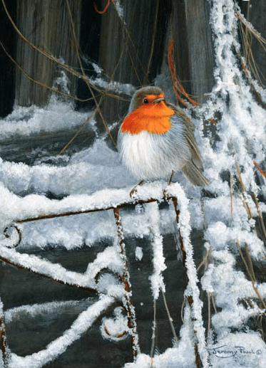 Winter Barn Robin Christmas Card by Jeremy Paul