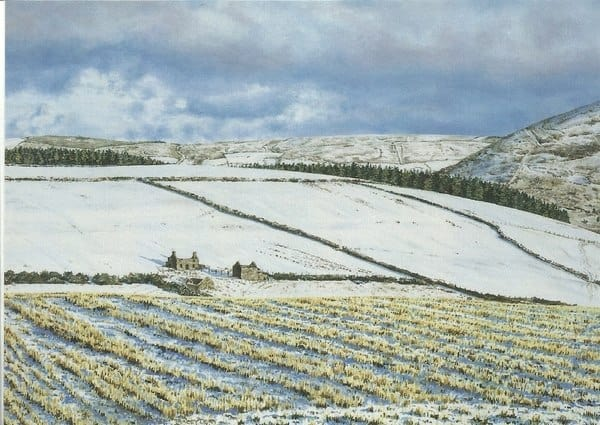 'Upper Coolingel' Greeting Card by Tracey Harding