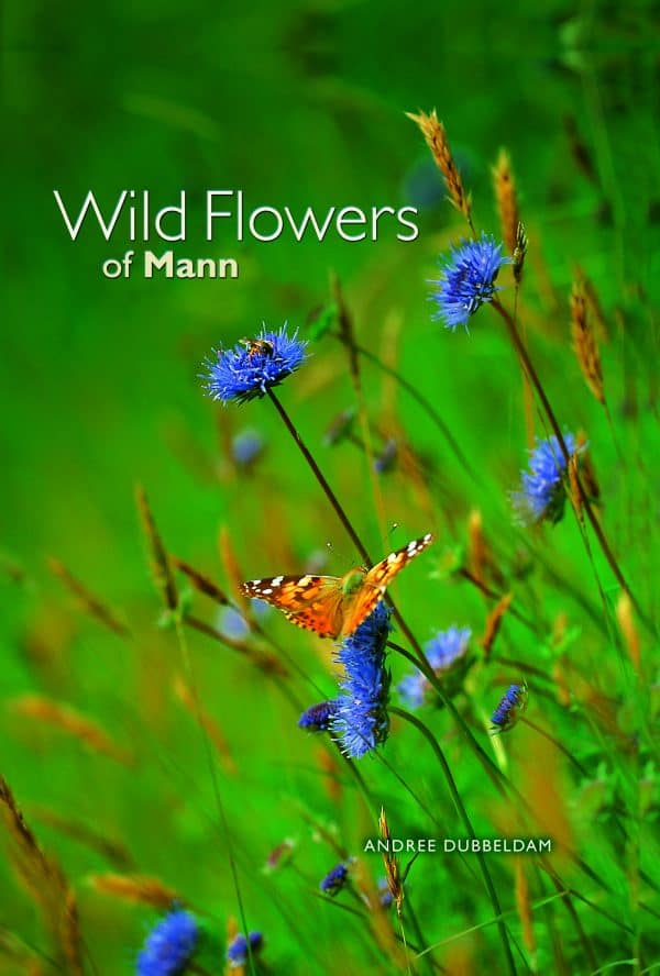 Wild Flowers of Mann