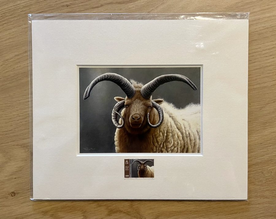 Loghtan Ram Print and Stamp by Jeremy Paul