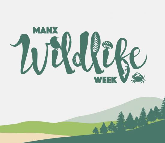 Manx Wildlife Week 2021
