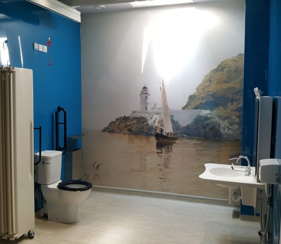 Showing the Changing Place toilet facility at the Manx Museum, which includes a hoist and changing table.